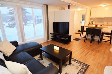 Halvorstuhaugen Nice/New 2 bedrooms basement flat. - Lillehammer - Lägenhet