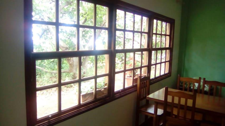 Casa entre aguacateros y gallinas - Canarias - Appartement