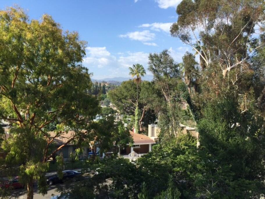 Highland Park Los Angeles Apartments For Rent