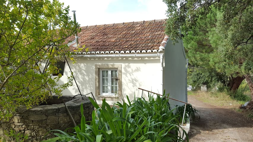 House Between Cork Oak Trees - Ribafria - Dom