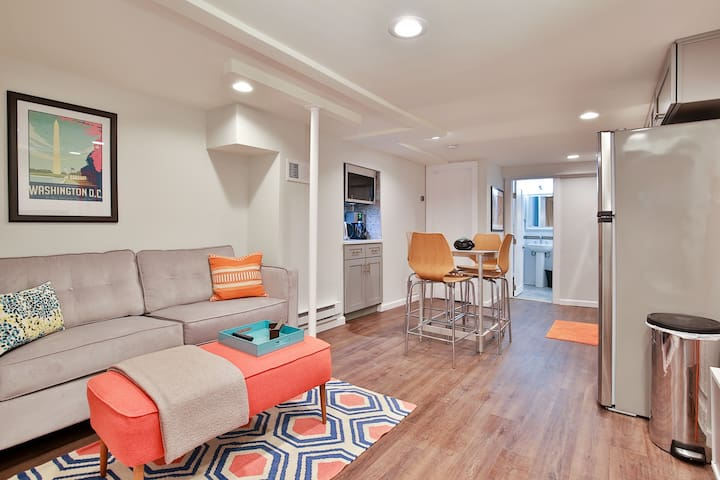 Designer English Basement in Columbia Heights
