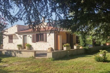 very nice villa in salento - Vila