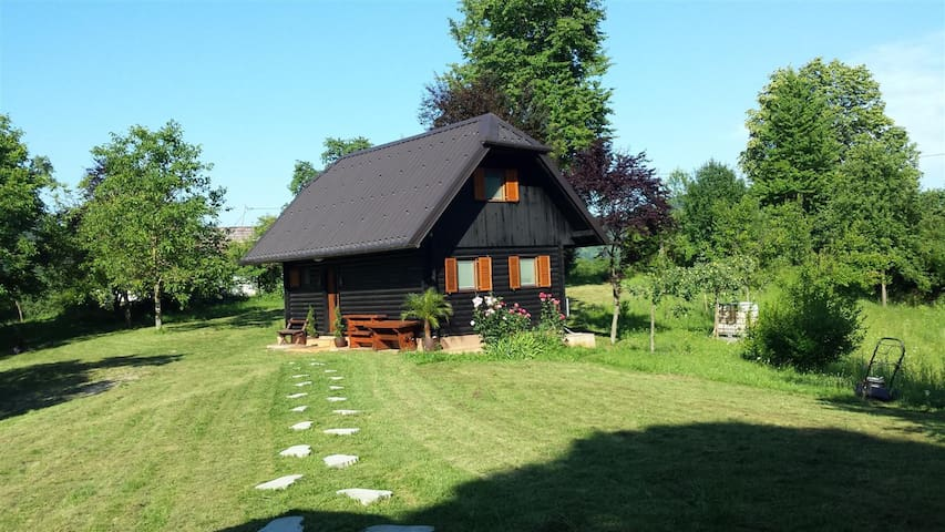 Cabin Holiday house Krone - Dolenjci