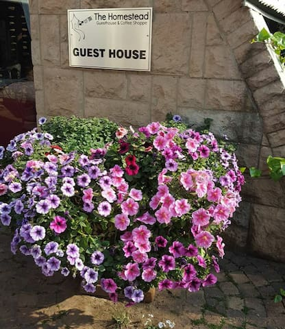 Homestead Guest House and Coffee Shop