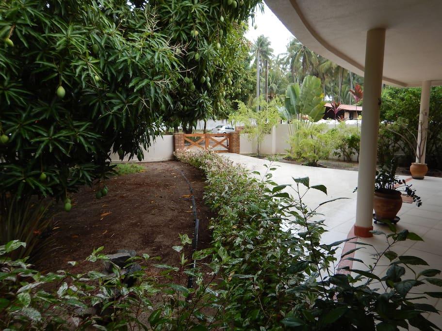 Vista da área frontal com jardim e mangueiras