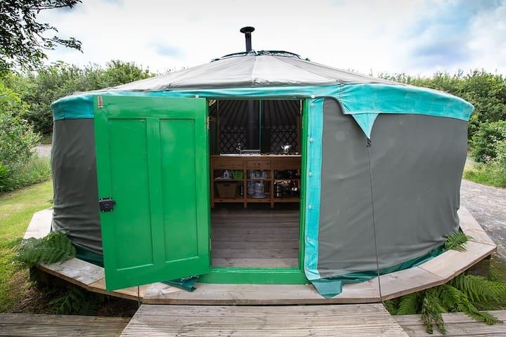 Tir Bach Farm The Painted Yurt