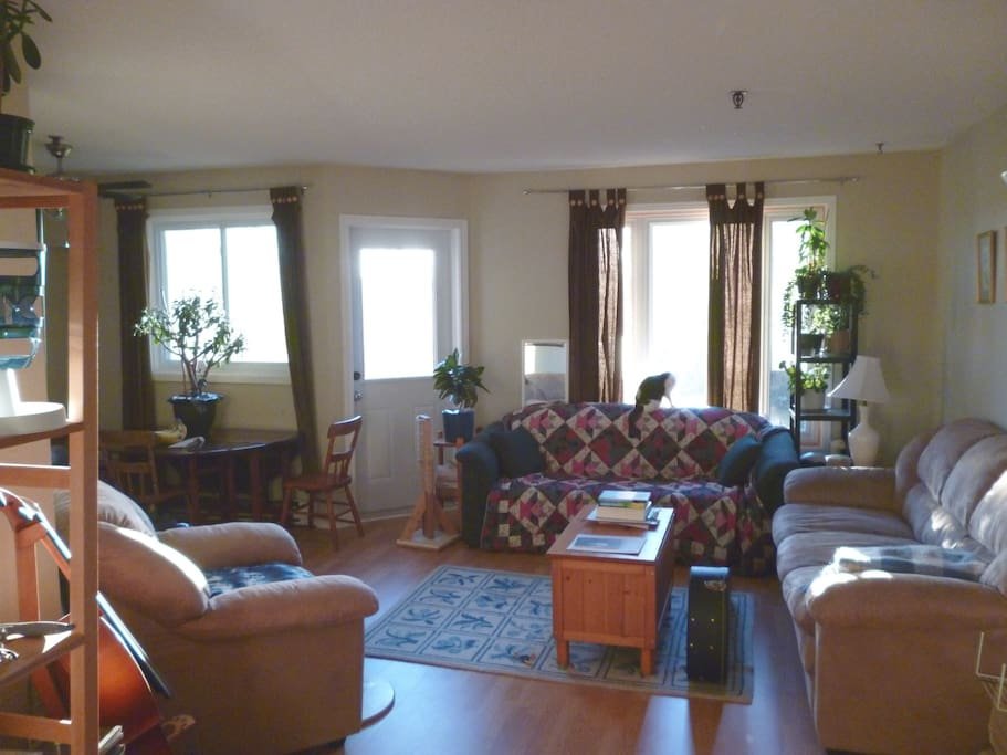 Comfy, downstairs shared living space.