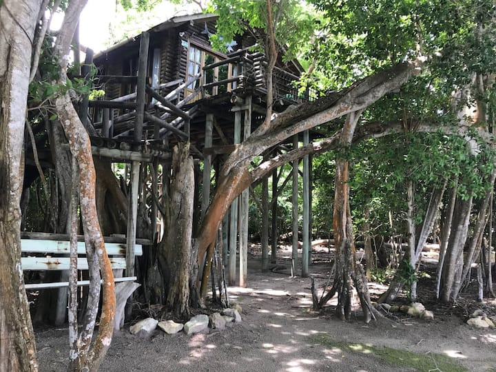 TREE HUT/SINGLE BED SHARED DORM X6/SHARED BATHROOM