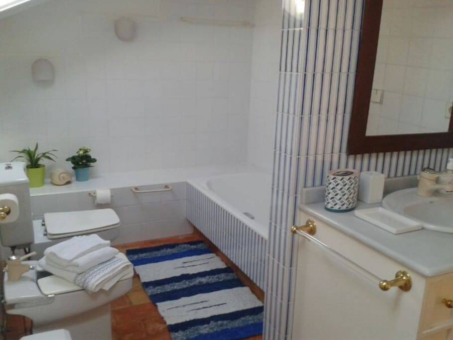 Otra vista del baño privado