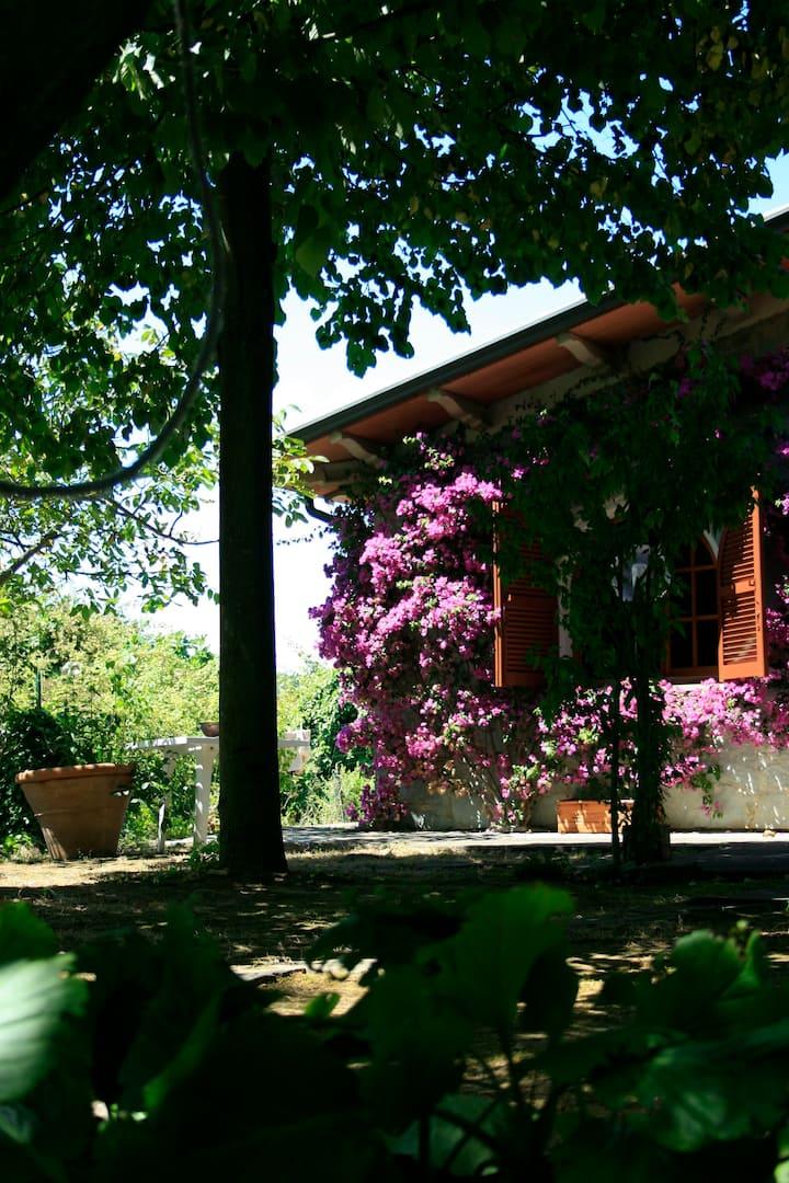 Villa Rurale con terrazzamenti
