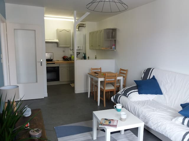 Charmant appartement Annonay hyper centre