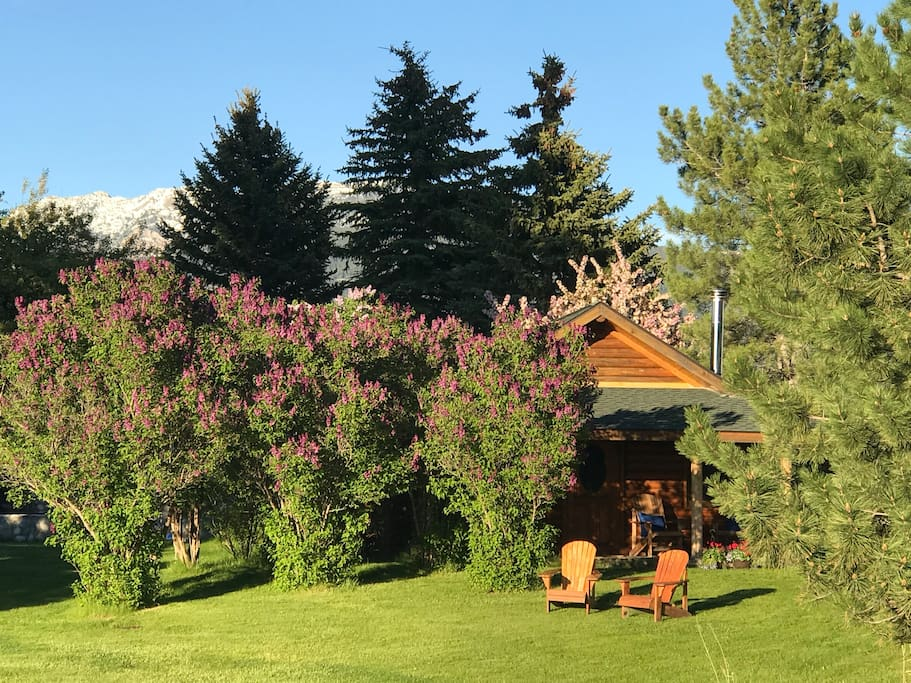 Charming and private guest cabin with amazing views of multiple mountain ranges.
