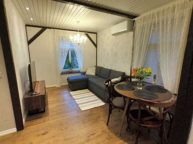 Charming flat with terrace in the heart of Tartu