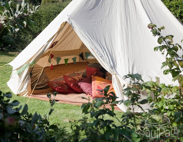 Cosy wood cabin with glamping tent - Fareham - Blockhütte