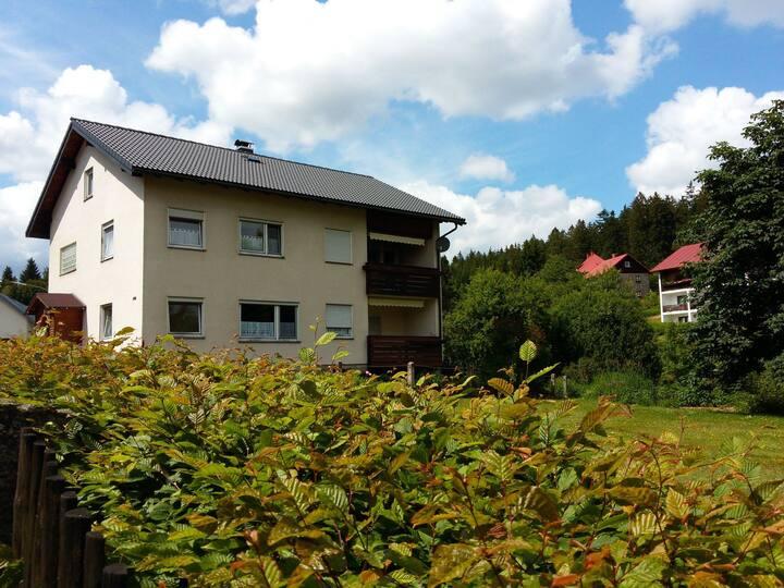Ferienwohnung mit Balkon in Fichtelberg/Neubau