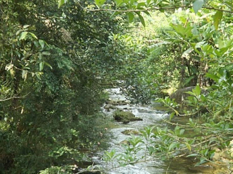 Riacho em frente ao  Le Refuge, onde temos o chalé do Refúgio na Montanha.
