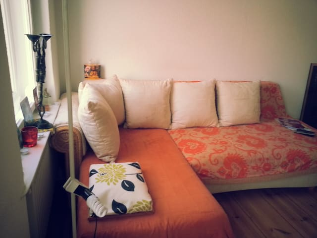 your room with comfy sleeping sofa