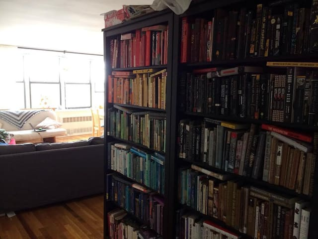 Hundreds of books for you to peruse, entrance into living room.