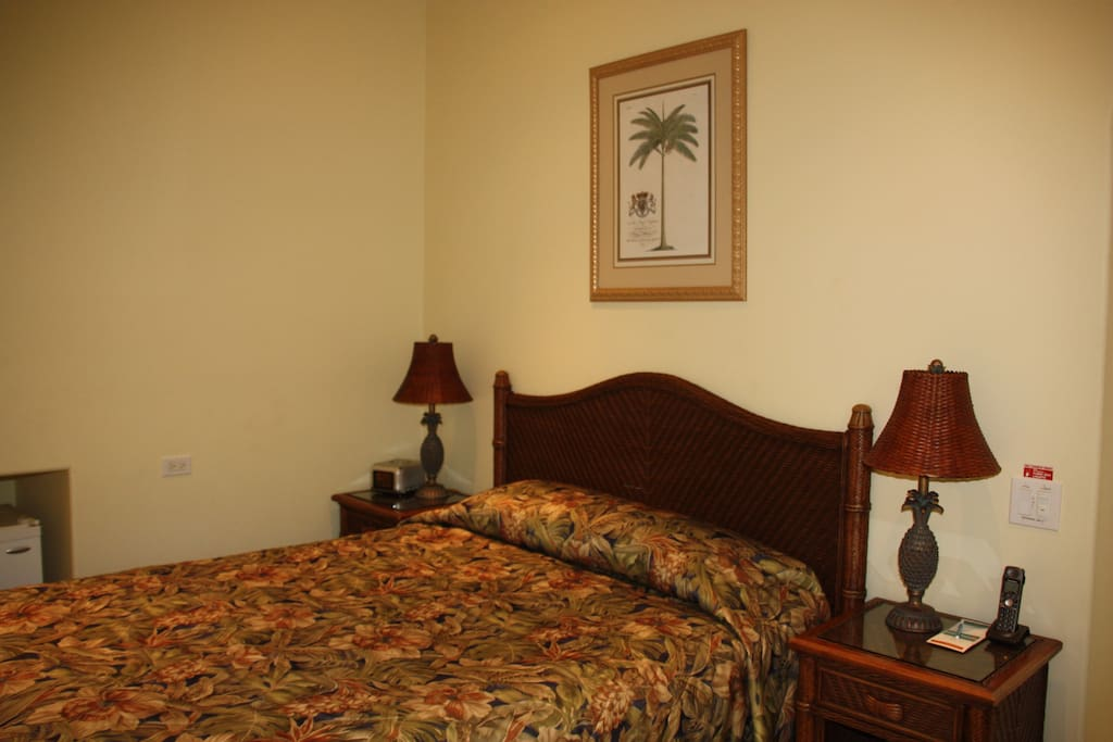 Plumeria Room with Queen size bed, private bathroom and garden views.