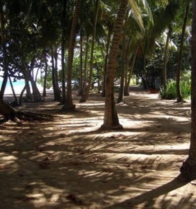 Closest beach area