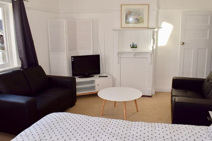 Comfortable Apartment In Trendy Haberfield (Via 2)