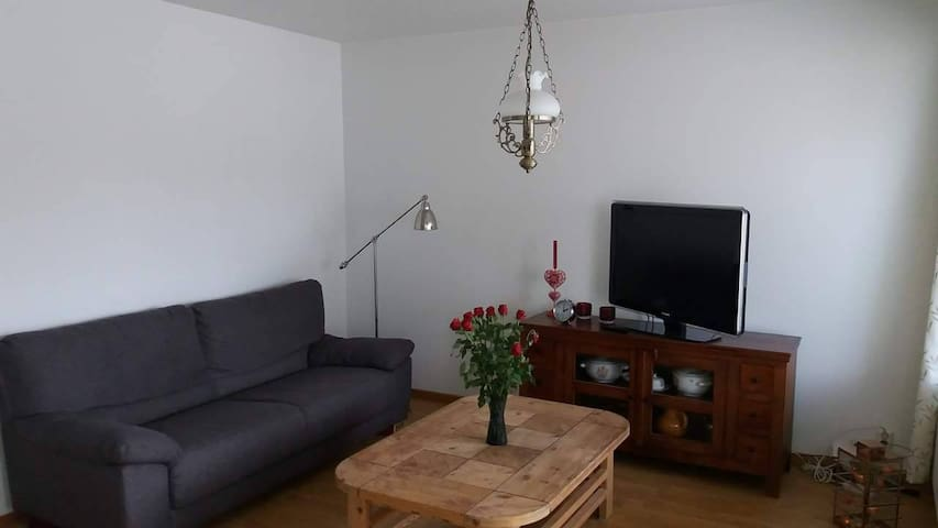 Apartment with 2bedrooms,sauna, livinghall,balcony - Hämeenlinna - Departamento