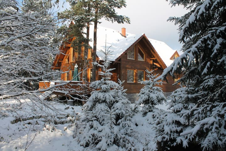 Tatras Lodge: spacious chalet on the river bank
