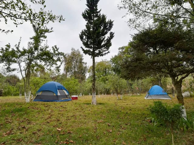 Comfortable camping near to city and commercials