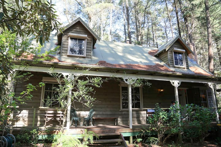 Holly Lodge - Medlow Bath - Blue Mountains - Medlow Bath - Hus