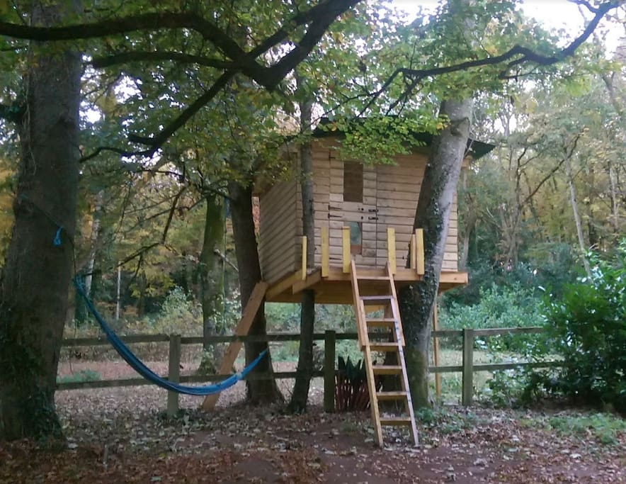 Heathfield Treehouse Glamping Treehouses For Rent In