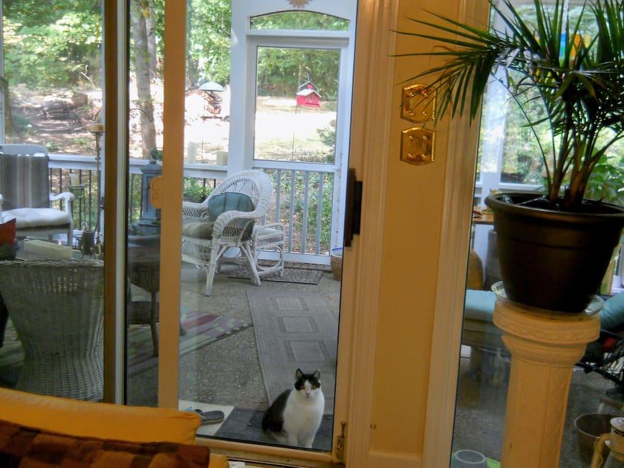 This is the newly-added screened porch, which is accessed from the living room or backyard.
