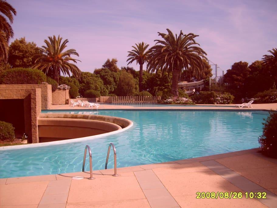 Master Pool view