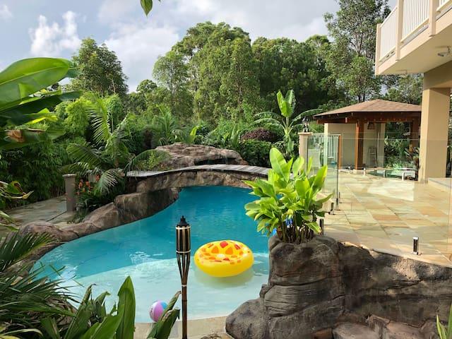 Forestdale Paradise