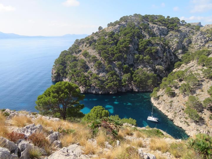 Experience the best of Minorca on floating boat