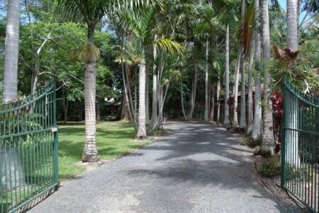 Emerald Tropical Palms B & B - Emerald Beach