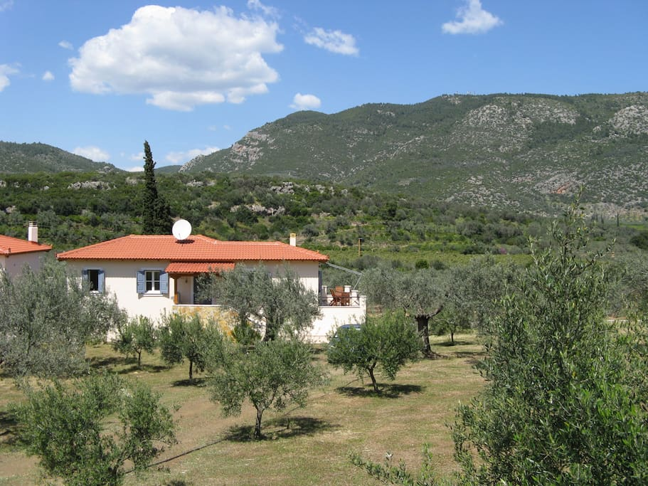 Het huisje vanaf de voorkant, midden in de olijfboomgaard