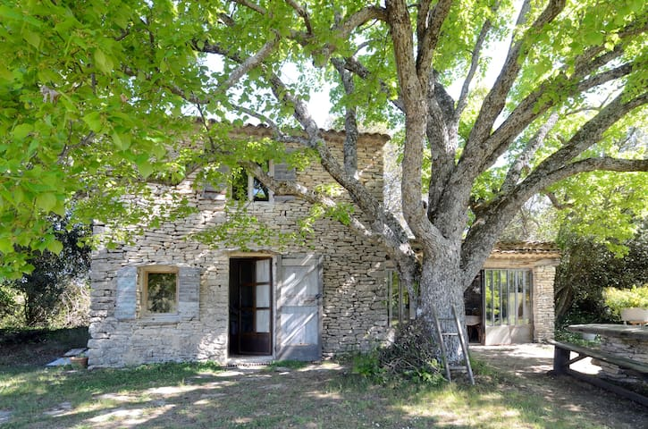Real Provence Cottage in Luberon - Saignon - Hus