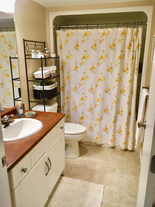 Main bathroom with full shower and tub
