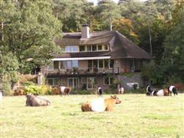 Het landhuis midden in de natuur. Lakenvelders - rivier - bos.