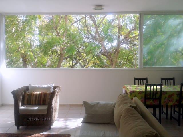 Lovely spacious apartment RamatAviv - Tel Aviv - Apartamento