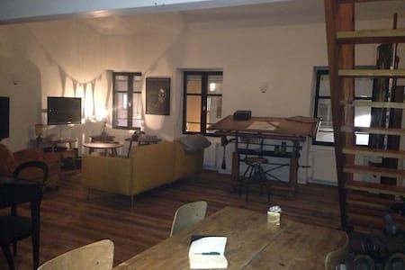 Appartement d'artistes centre ville de Montbrison - Montbrison - Квартира