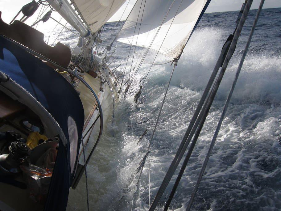 First Light racing to Bermuda - burying her starboard rail!