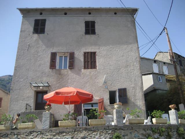 Appartement en castagniccia - Campana - Departamento