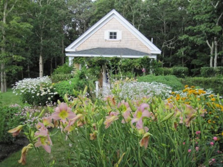 Perennials Invite You to Cottage door