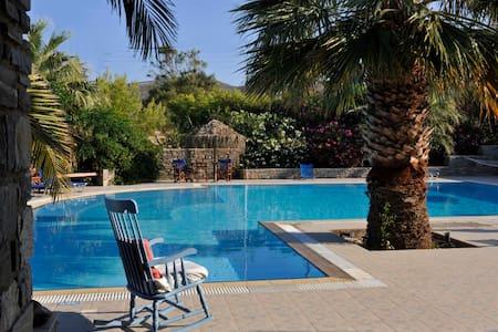 Garden view studio & swimming pool