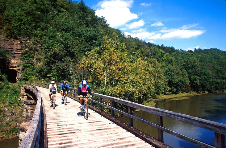 The Greenbrier River Trail State Park is just a few miles away.  78 miles of Heaven.