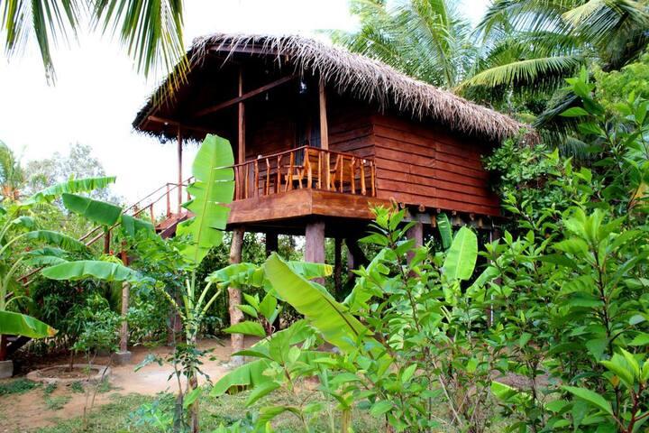 Sigiri Charuka Resort  Tree house