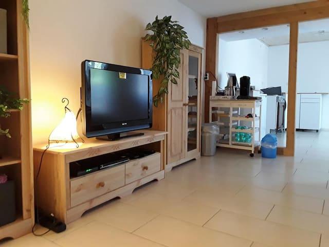 TV und DVD Player sind endlich angeschlossen