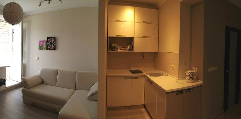 Слева — комната с раскладным двухспальным диваном и выходом на балкон и справа — кухонный уголок