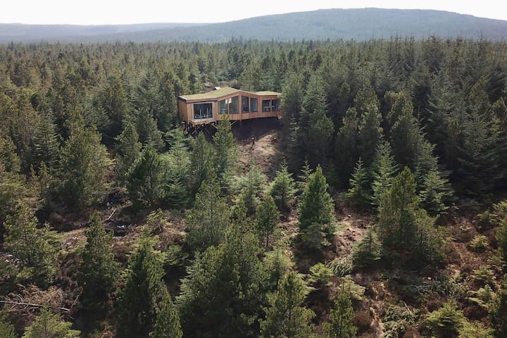 Secluded forest retreat-Uist-Outer Hebrides-Stag